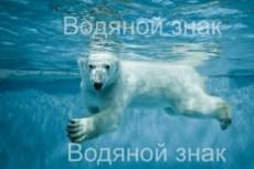 Уберу фон, наложу водяной знак, настрою контрастность 12 - kwork.ru