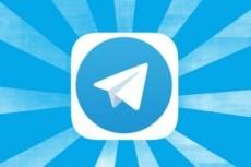 Telegram бот 13 - kwork.ru