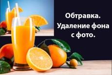 Удаление фона с 40 изображений (обтравка) 10 - kwork.ru