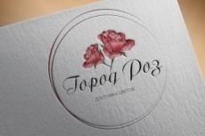 Дизайн логотипа 224 - kwork.ru