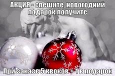 сделаю СЕО консультацию в скайпе 4 - kwork.ru