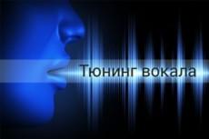 Тюнинг  вокала одного трека до 4 мин 11 - kwork.ru