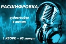 Расшифровка аудио видеозаписей, опыт работы 2 года, конфиденциально 13 - kwork.ru