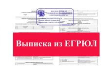 Изменения в егрюл 9 - kwork.ru