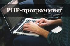 Напишу скрипт php, js 8 - kwork.ru