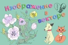 Отрисую изображение в вектор 40 - kwork.ru