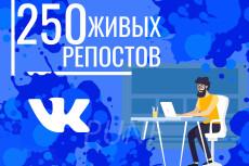 На 10 дней -Увеличу кол-во уникальных посетителей от 20 до 500 в сутки 26 - kwork.ru