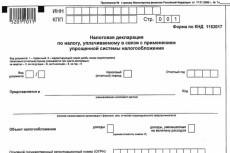 Заполню налоговую декларацию 3-ндфл при получении дохода 10 - kwork.ru