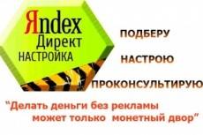 Профессиональная настройка Яндекс-Директ с низкой ценой клика + бонус 10 - kwork.ru