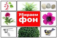 Поменяю фон на фото 15 - kwork.ru