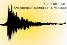 Озвучу автоответчик, голосовое меню, IVR 4 - kwork.ru