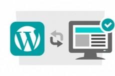 Научу создавать сайты на  WordPress 12 - kwork.ru