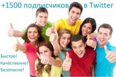 1700 подписчиков на Ваш аккаунт в Twitter 22 - kwork.ru