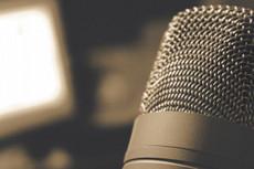 Напишу песню в стиле рэп 33 - kwork.ru