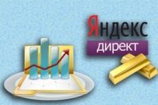 Настройка Яндекс Директ- 1 кампания на поиск и 2 РСЯ кампании 18 - kwork.ru