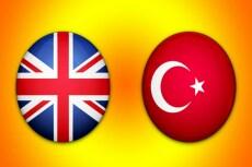 Профессионально переведу с Турецкого и на Турецкий 7 - kwork.ru