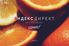 Настрою РК в Яндекс Директ 8 - kwork.ru