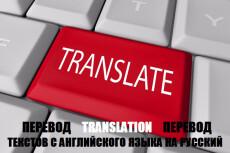 Premium перевод с польского и на польский язык 46 - kwork.ru