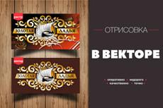 Отрисую ваш графический элемент из растра в векторный формат 30 - kwork.ru
