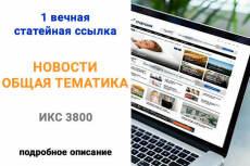 Ручной статейный прогон по трастовым сайтам 18 - kwork.ru