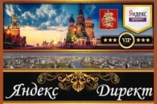 Настройка Яндекс Директ + бонус настройка метрики 14 - kwork.ru