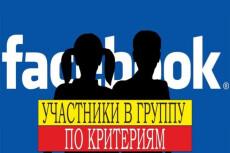 Добавление 3 000 живых русскоязычных участников в группу facebook 15 - kwork.ru