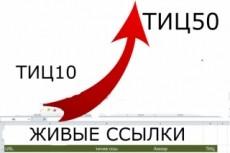 Размещение 100 вечных ссылок на трастовых сайтах с ТИЦ от 50 до 300 28 - kwork.ru