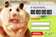 Создам Лэндинг с конверсией 39-42% 9 - kwork.ru