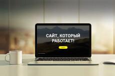 Лендинг пейдж под ключ с настройкой форм и установкой на хостинг 22 - kwork.ru