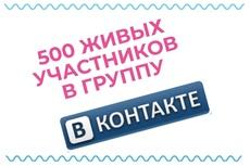 500 живых участников в группу ВК, ВКонтакте, без ботов и программ 5 - kwork.ru