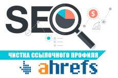 Консультация в Skype по продвижению вашего сайта на Wordpress 46 - kwork.ru