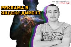 Настрою Яндекс.Директ для вашего проекта 17 - kwork.ru