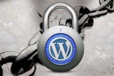 Помогу защитить сайт на Wordpress 16 - kwork.ru