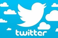 Прокачаю ваш Твиттер аккаунт: +2500 фолловеров (подписчиков) в Twitter 3 - kwork.ru
