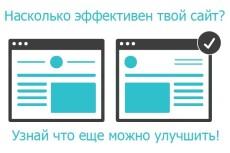 Комплексный аудит вашего проекта в прямом эфире по скайпу 5 - kwork.ru