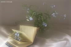 Напишу поздравительные стихи 7 - kwork.ru