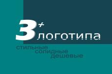 Создам стильный, индивидуальный логотип в векторе 17 - kwork.ru