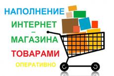 наполнение интернет-магазина 8 - kwork.ru