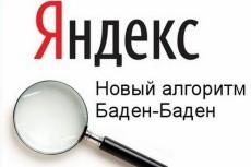 Грамотная оптимизация посадочных страниц 4 - kwork.ru