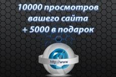 8000 тысяч просмотров для вашего сайта + 2000 тысячи в подарок 13 - kwork.ru