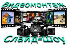 Напишу синопсис 11 - kwork.ru