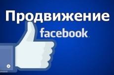 Комплексное продвижение товаров и услуг в соцсетях и площадках 15 - kwork.ru