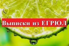 Срочная выписка из егрип в форме электронного документа с ЭЦП 6 - kwork.ru