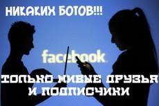 Добавлю 1500 подписчиков на паблик FanPage в Facebook 8 - kwork.ru