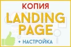 Сделаю копию лендинга 14 - kwork.ru