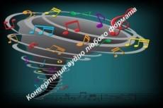 Конвертация форматов аудио файлов в любой другой 15 - kwork.ru