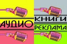Озвучка видео, кино, рекламы 10 - kwork.ru