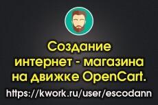 Создание интернет-магазина на движке Opencart 2.2.0.0 21 - kwork.ru