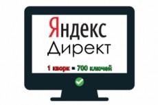Контекстная реклама Я. Директ 100 ключевых слов 10 - kwork.ru
