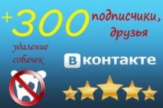 Вконтакте Друзья. Подписчики на аккаунт, профиль 555 человек 9 - kwork.ru